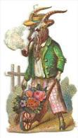 Découpis Gaufré, Animaux Humanisés, Bouc Ou Chèvre Fumant La Pipe, Brouette De Fleurs, Chapeau, Dim 4cm X 2cm - Victorian Die-cuts