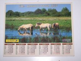 2004 CALENDRIER (double) ALMANACH DU FACTEUR, LA POSTE, PONEYS, LUSITANIEN, OLLER, ARDENNES 08 - Calendriers