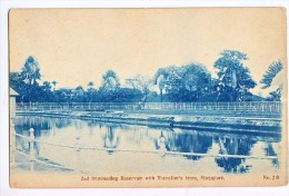 SECOND IMPOUNDING RESERVOIR WITH TRAVELLER'S TREES  1920 - Singapour