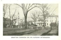 Grafton. Grafton Common On An Autumn Afternoon. - Autres