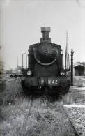 Photo Loco  Des F.P N° 42 Ligne FERRARA -OSTELLATO-CODIGORO Col Schnabel - Matériel