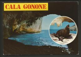CP1521 * 1 CARTE POSTALE Cala Gonone Sardegna Italia Italie Sardaigne - Italie