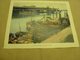 Année 1954 Grande Photographie En Couleurs (27cm X 21cm) Chalutiers Et Cargos (gros Plan) Identifiés  à BOULOGNE - Bateaux