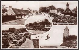 AYR - Multivues - Multi Wien - Ayrshire