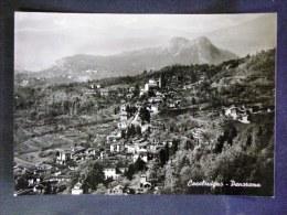 LOMBARDIA -VARESE -CASALZUIGNO -F.G. LOTTO N°303 - Varese