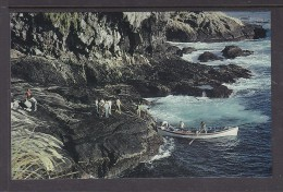 TRISTAN DA CUNHA: LONGBOAT BEING HAULED OUT AT  NIGHTINGALE ISLAND - St. Helena