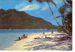 POLYNESIE FRANCAISE - MOOREA - SUR LE MOTU EN FACE DU CLUB MEDITERRANEE - Polynésie Française