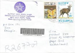 Ethiopia 2000 Jimma Literacy Year Book Bushbuck Antilope Registered Cover - Ethiopië