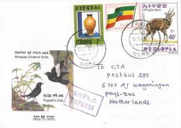 Ethiopia 2001 Goba Pottery Bushbuck Antilope Express Cover - Ethiopië