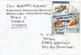 Ethiopia 2000 Etang Revolution Flag Woodpecker Cover - Ethiopië