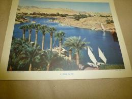 Photo Roger Violet En 1957  (27cm X 21cm)   Vallée Du NIL (village Et Bateaux)...........envoi Gratuit - Afrique