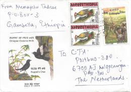 Ethiopia 2000 Gambella Operation Sunset Cover - Ethiopië