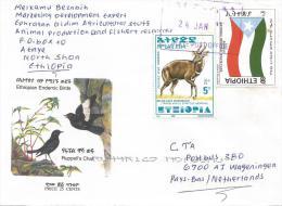 Ethiopia 2001 Ataye Flag Bushbuck Antilope Cover - Ethiopië