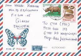 Ethiopia 2005 Gidole Agriculture Amaranths Rhinoceros Cover - Ethiopië