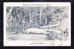 NC-01 APRES LA PECHE EN NOUVELLE CALEDONIE - Nuova Caledonia