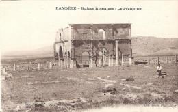 Lambèse - Ruines Romaines - Le Prétorium - Argelia