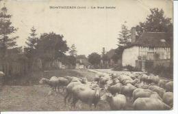 MONTSUZAIN - LA RUE HAUTE ( Animées + MOUTON ) - Ohne Zuordnung