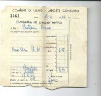 LUINO BOLLETTA PAGAMENTO--- 1966 - Italia