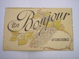 CPA FANTAISIE RARE !! OBOURG ( MONS SOIGNIES ) - UN BONJOUR ( BRANCHE DE LILAS ) - Mons