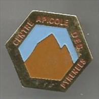 Centre Apicole Des Pyrénées Miel Abeille - Tiere