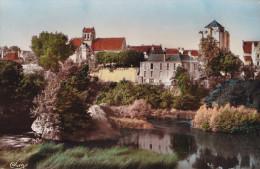 LA ROCHE POSAY L'EGLISE FORTIFIEE (DIL109) - La Roche Posay