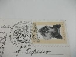 Annullo Esperanto 1966  Budapest Halaszbastya - Esperanto