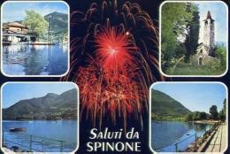 Spinone - Bergamo - 1 - Formato Grande Viaggiata - Bergamo