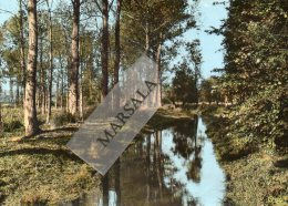 CPSM  Authuile L' Ancre - Bray Sur Somme