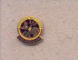 13-cnp18. Pin Emblema Servicios Sistemas Especiales . CNP - Policia