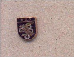 13-cnp35. Pin Emblema GEO. CNP - Policia
