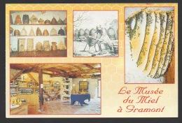 DF / 82 TARN ET GARONNE / GRAMONT / LE MUSEE DU MIEL / APICULTURE - Sonstige Gemeinden