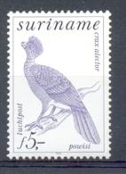 Mmv0156 FAUNA VOGELS BIRDS POWISI VÖGEL AVES OISEAUX SURINAME 1979 PF/MNH - Birds