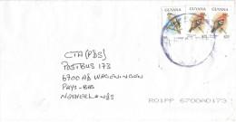 Guyana 2005 New Amsterdam Gos Hawk Cross Bill Bird Of Prey Cover - Guyana (1966-...)