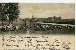 Magny   (Metz)  Berger Et Ses Moutons Sur Le Bord De La Seille   Hurtin No 75  Cliché Prillot - Francia