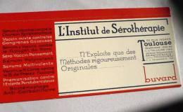 BUVARD : INSTITUT DE SÉROTHÉRAPIE Toulouse, Rue Ingres / Années 50 / TBE - Buvards, Protège-cahiers Illustrés