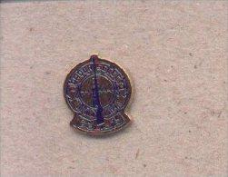 13cnp-46. Pin Tirador Selecto CNP - Policia