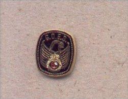 13cnp-53. Pin Emblema G.O.E.S.. CNP - Policia