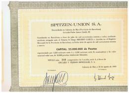 ACCION ANTIGUA - ACTION ANTIQUE = Spitzen Union SA 1969 - Cabrera De Mar - Acciones & Títulos