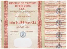 ACCION ANTIGUA - ACTION ANTIQUE = Compagnie Des Eaux Et Electricite De L'Ouest Africain - Senegal - Acciones & Títulos