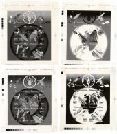 Mali 0944/47 Films Originaux Pour Impression OFFSET, ( Noir , Magenta , Cyan , Jaune ) FAO , Insectes , Baleine , Lion - Contro La Fame