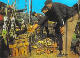 Métiers > Pêche- RETOUR DE PECHE  - Pecheurs Fisherman  Fishermen (crabe Crabes) *PRIX FIXE - Pêche