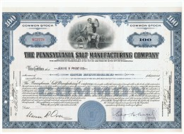 ACCION ANTIGUA - ACTION ANTIQUE = Pensilvania Salt Manufacturing Company Años 50 Roja - Acciones & Títulos