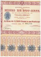 ACCION ANTIGUA - ACTION ANTIQUE = Mines De Bou - Arfa  -  Paris - Acciones & Títulos