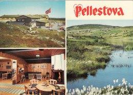 Promotion Multiview Print Pellestova Hotel Lillehammer Norway Postcard Size - Géographie