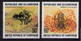 CAMEROON Frogs - Grenouilles