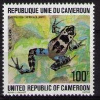 CAMEROON Frog - Grenouilles