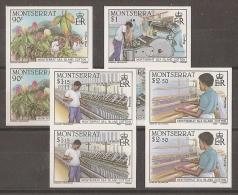 AGRICULTURA - MONTSERRAT 1985 - Yvert #577/80 (parejas Sin Dentar) - MNH ** - Agricultura