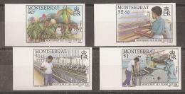 AGRICULTURA - MONTSERRAT 1985 - Yvert #577/80 (sin Dentar) - MNH ** - Agricultura