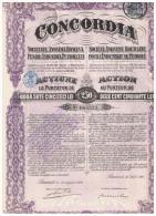 ACCION ANTIGUA - ACTION ANTIQUE = CONCORDIA  1920 - Acciones & Títulos