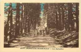 Tarn  - Ref A 38 - Labastide-rouairoux -les Sapinettes -  Carte Bon état - - Frankreich
